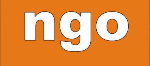 Skuteczne NGO - strategia współpracy Gminy Niedrzwica Duża z organizacjami pozarządowymi