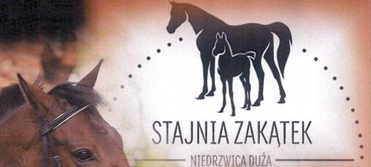 Piknik Jeździecki - Niedrzwica Duża 16.07.2015