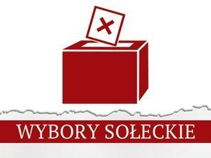 Zarządzenie nr 107/2019 Wójta Gminy Niedrzwica Duża z dnia 12.11.2019 roku w sprawie przeprowadzenia wyborów uzupełniających na Sołtysa Sołectwa Borkowizna